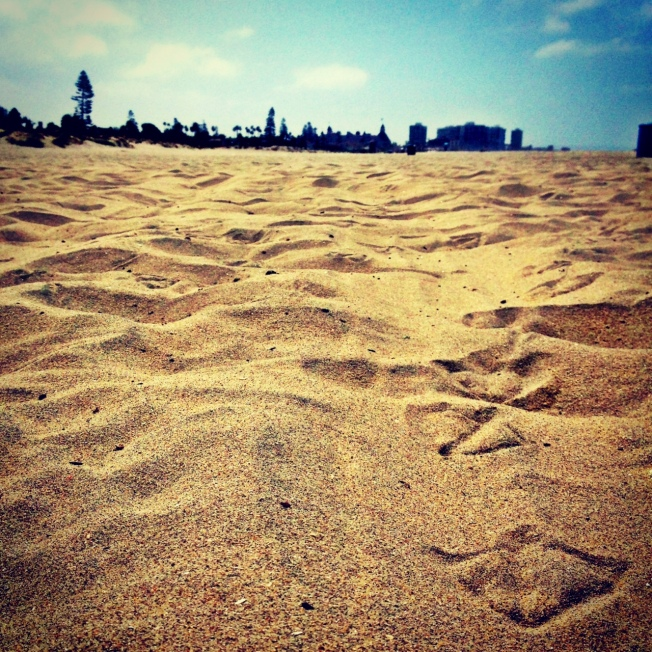 Best Beaches in San Diego from The Wanderer Guides Blog. #sandiego