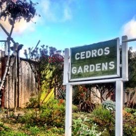 Visit Solana Beach in San Diego! #sandiego #travelideas #gardens